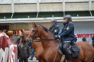 Pferd_Am_Banner